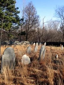 Endicott Cemetery Danvers Mental Hospital